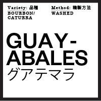 origin Guayabales_Guatemala