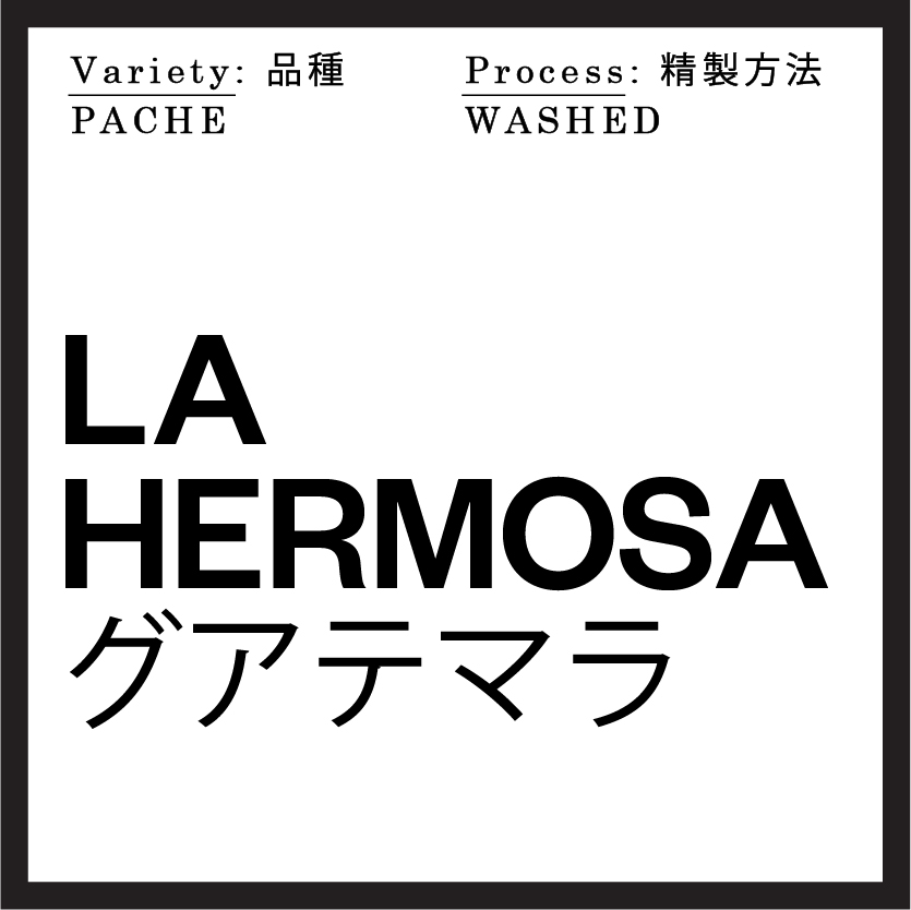 origin LaHermosa_Guatemala