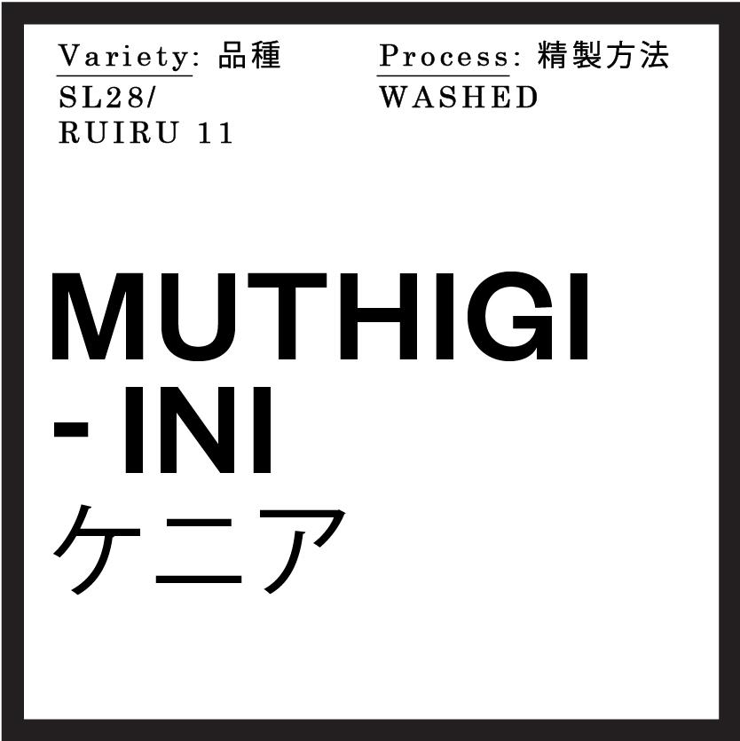 origin Muthigi-ini_Kenya