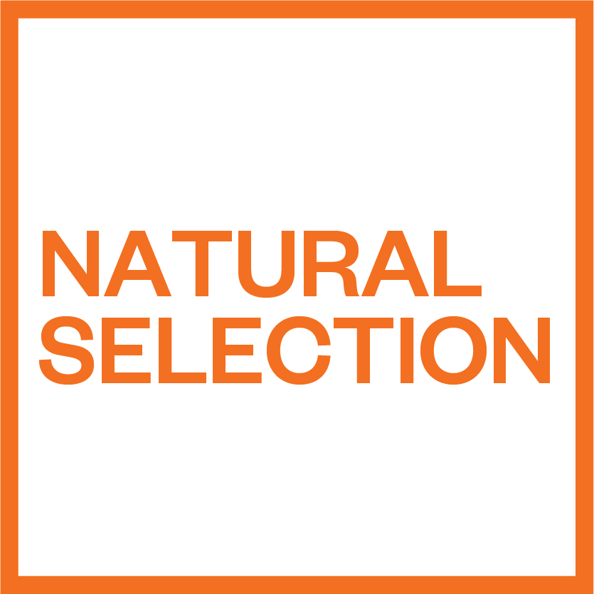 origin Natural_Selection