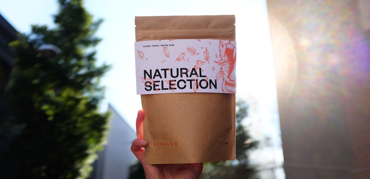 Natural Selection Coffee by Single O